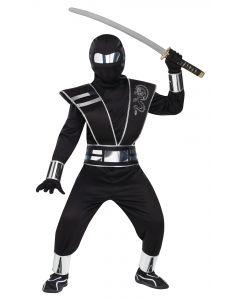 Silver Mirror Ninja