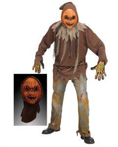 LU E.L Pumpkin