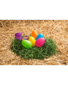 "3.25"" Classic Bright Eggs"