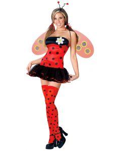 Leggy Ladybug
