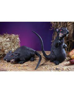 Ferocious Rat Assortment
