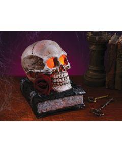 """6"""" Skull on Book w/Flicker LED Light"""