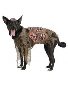 Zombie Dog Pet Costume