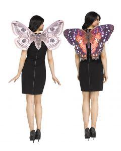 Vinyl Photoreal Moth Wing Assortment