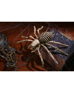 "9"" Spider Skeleton"