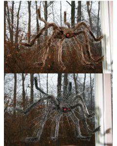 "30"" Spider Crasher Asortment"