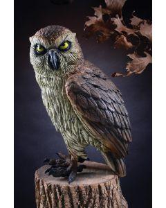 "13.5"" Realistic Owl"