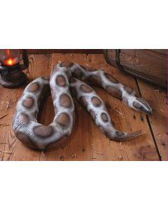 6 1/2 FT Colossal Boa Snake