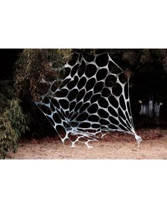 20 Foot Yard Web