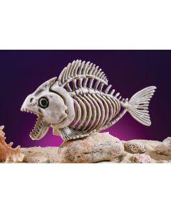 """9.5"""" Skele-Piranha"""