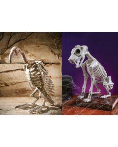 Skele-Mals Assortment