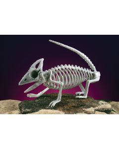 "14.5"" Skele-Lizard"