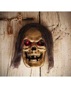 LED Skull Decor