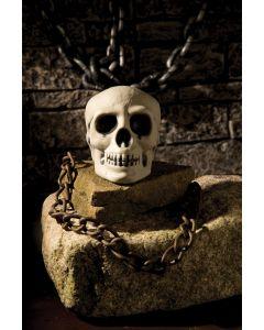 """4 """" Scary Skull"""