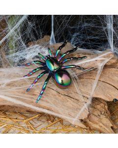 Oil Slick Spider