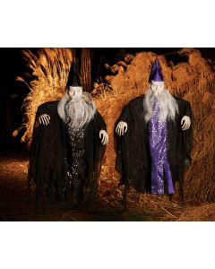 "36"" Celestial Wizard Assortment"