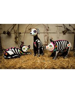 Day of the Dead Pets