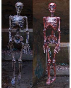 "36"" Catacomb Skeleton Assortment"