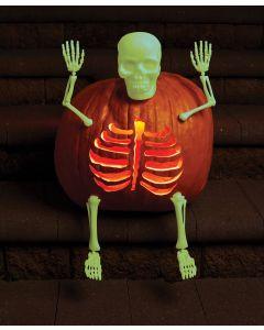 GID Pumpkin Bones Carve & Decorating Kit