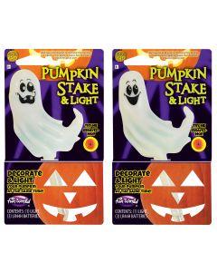 LI Color Change Pumpkin Light & Stake