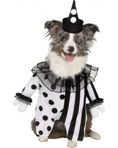 Killer Clown Pet Costume