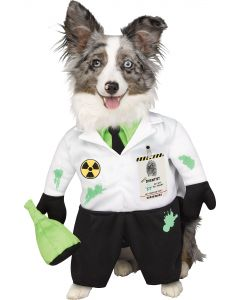 Mad Scientist Pet Costume