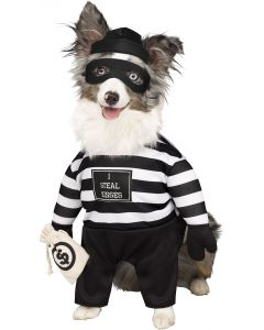 Robber Pup Pet Costume