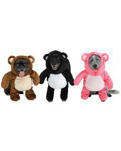 Teddy Pup Pet Costume Assortment