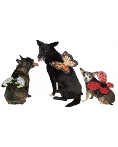 Pet Wing Accessory Assortment