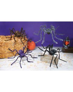 """50"""" Hairy Spider"""